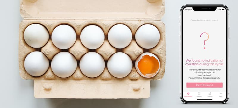 egg carton with 10 eggs, 1 is broken